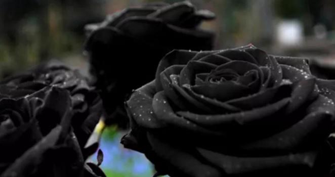 Falleció el 16/05/2019 a los 60 años de edad. Sus restos recibieron sepultura el 17/05/2019, a las 17.30 horas, en el Cementerio municipal.