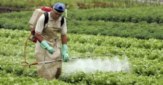 Fumigaciones con agrotóxicos en Pergamino: procesan a tres productores rurales