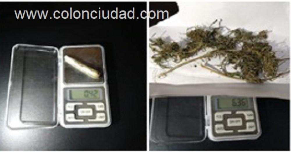 El cannabis en cuestión.