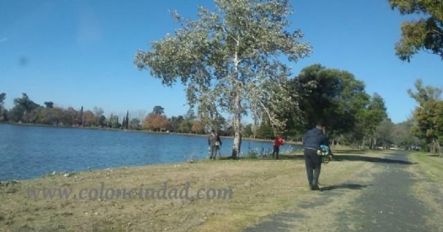 Labores de desmalezamiento en el predio del Lago Municipal