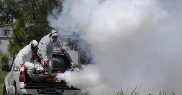 Refuerzan las labores de fumigación