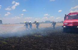 Bomberos Voluntarios acudieron a un incendio de rastrojos