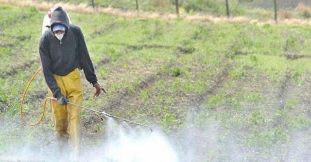 La Justicia prohibió fumigaciones en campos de Pergamino por la contaminación generada