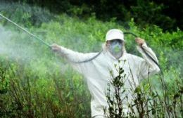 Los herbicidas que contengan el químico glifosato serán restringidos por zonas.